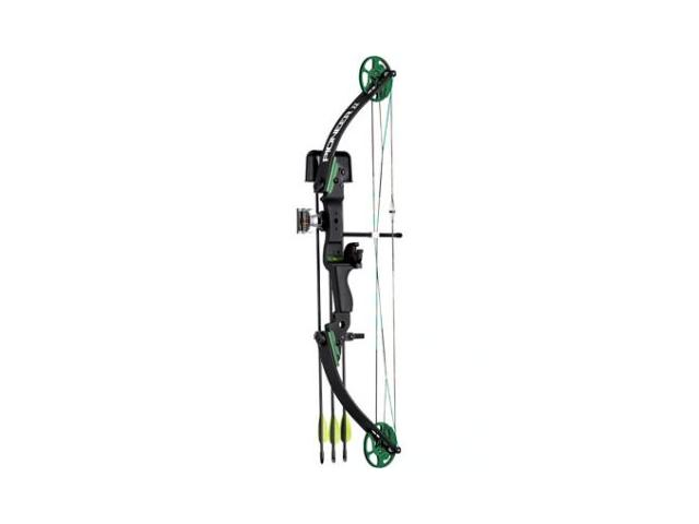 Looking for Beginner Archery Bow